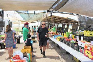 פירות ירקות חסה טרי מהחקלאי