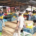 חקלאים ירקות פירות רמת השרון
