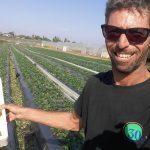 ביו תות שדה רמת השרון משק חקלאי