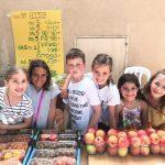 מכירה ישירה שוק איכרים חקלאים פירות ירקות טרי מהשדה ילדים