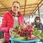 שוק איכרים חקלאים מכירה ישירה