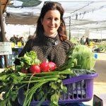 משק רמי קנטור תותים פירות ירקות בשדה חקלאים