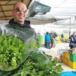 ירק ירקות פירות תותים עגבניות מלפפונים חסה רמת השרון