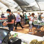 משק רמי קנטור מכירה ישירה שוק איכרים