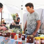 דבש טבעי טהור מכירה ישירה משק רמי קנטור